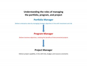 Portfolio Program Project Roles